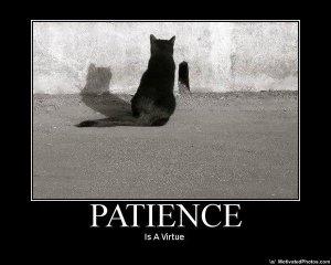 LEGIT-patience