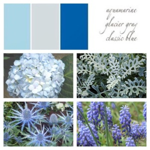 Light Blue Hydrangea, Dusty Miller, Thistle, Grape Hyacinth