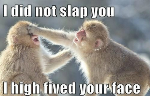 i-did-not-slap-you-i-high-fived-your-face